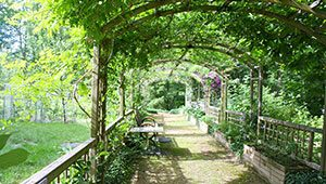 difference pergola tonnelle